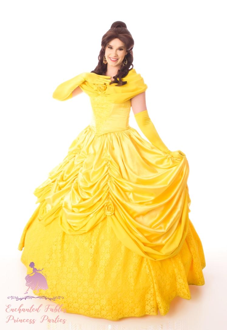 Enchanted Fables Princess Beauty 003